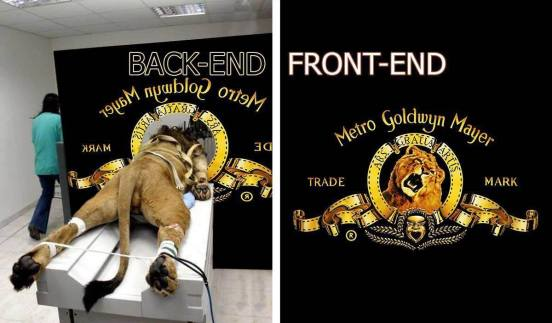 business backend frontend